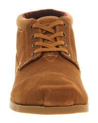 TOMS Brown Botas Boots for men
