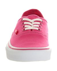 Vans Pink Authentic Carmine Rose for men