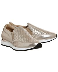 Office Multicolor Polar Woven Runners