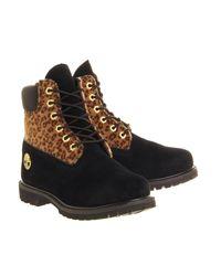 Timberland Black Premium 6 Boots