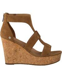 Ugg Brown Cognac Shoe Whitney