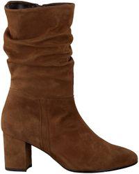 Gabor Brown Cognacfarbene Hohe Stiefel 801.1