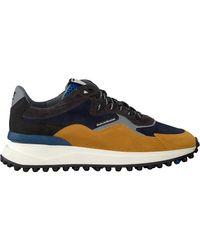Floris Van Bommel Gelbe Sneaker Low 16339 in Yellow für Herren