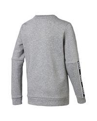 PUMA Sweater »Amplified Jungen Sweatshirt« in Gray für Herren
