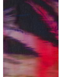 Écharpe Bleu Marine Foncé 'Paul's Photo' En Coton Paul Smith pour homme en coloris Blue