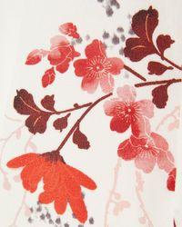 Phase Eight Multicolor Nina Blossom Print Blouse