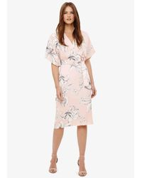 Phase Eight Multicolor Paige Floral Dress