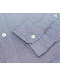 KENZO Blue Eye Oxford Shirt for men