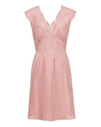 Reiss Pink Marianna-lace Fit And Fla