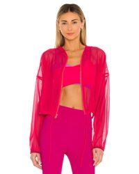 Lanston Zip ジャケット Pink