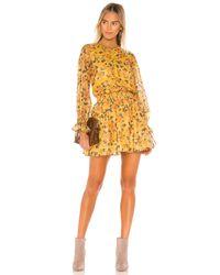 Tularosa Yellow Camden Dress