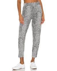 Bobi Leopard パンツ Gray