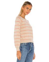 MISA Los Angles Multicolor Justine Sweater