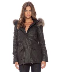 Sam. Black Cabin Parka With Natural Asiatic Raccoon Fur