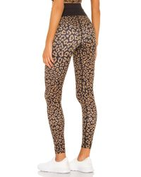 Beach Riot Brown Leopard Legging