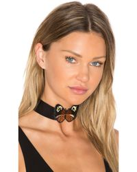 Child Of Wild Black Monarch Leather Choker