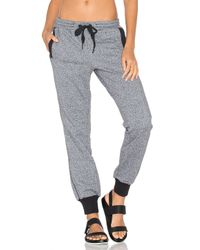 Adidas By Stella McCartney Black Essentials Sweatpant