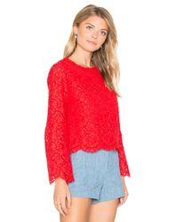 Alice + Olivia Red Pasha Crop Top
