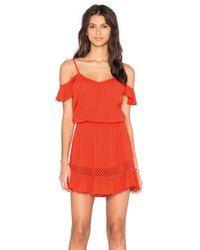 Heartloom Multicolor Jina Cotton-Blend Dress