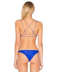 Mikoh Swimwear Blue Alapio Scoop Top