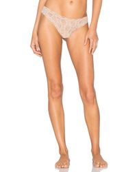 Only Hearts - Multicolor Stretch Lace Thong - Lyst