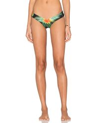 Stone Fox - Multicolor Tucker Bikini Bottom - Lyst