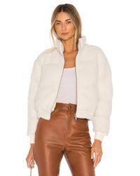 Tularosa White Gage Jacket