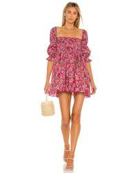 MISA Los Angles Zadie ドレス Pink