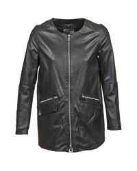 Oakwood Black Sabine Coat