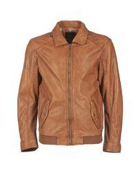 Oakwood Brown 61825 Leather Jacket for men