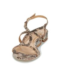 Betty London - Brown Siguelle Sandals - Lyst