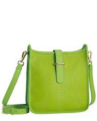 Gigi New York Green Elle Python Crossbody