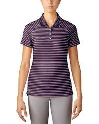 Adidas Originals Purple Core Hybrid Novelty Basic Polo