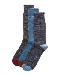 Original Penguin Blue Set Of 3 Socks for men