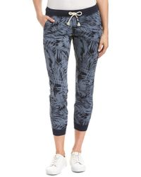 Sol Angeles Blue Palm Jogger Pant