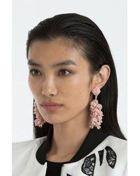Sachin & Babi - Multicolor Grapes Earrings   Rose - Lyst