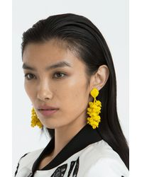 Sachin & Babi | Multicolor Grapes Earrings | Lemon | Lyst