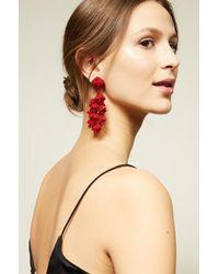 Sachin & Babi - Red Grapes Chunky Beaded Dangle Earrings - Lyst