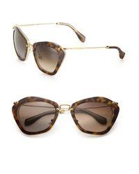 Miu Miu Brown Noir Catwalk Cat Eye Sunglasses