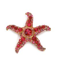 Kenneth Jay Lane - Red Maroon Starfish Pin - Lyst