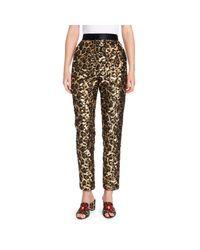 Dolce & Gabbana Multicolor Sequin Leopard Print Ankle Pants