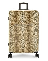 "Roberto Cavalli Brown 27"" Cheetah-print Hard Case Spinner Suitcase"