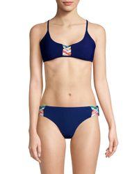 Red Carter Blue Strappy Bikini Top