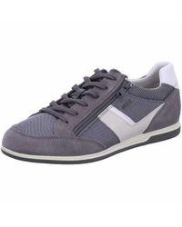 Geox Sneaker in Gray für Herren