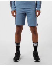 Tommy Hilfiger Blue Tape Fleece Shorts for men