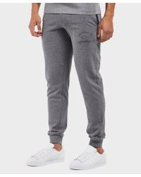 Paul And Shark - Gray Cuff Pant for Men - Lyst