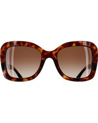 Chanel Brown Butterfly Sunglasses