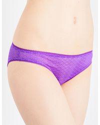 Heidi Klum Intimates - Purple Roman Crush Stretch-lace Bikini Briefs - Lyst