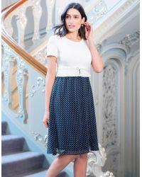 Seraphine Blue Polka Dot Silk Maternity & Nursing Dress