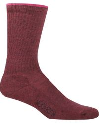 Woolrich Red Tipped Solid Novelty Sock (2 Pairs)